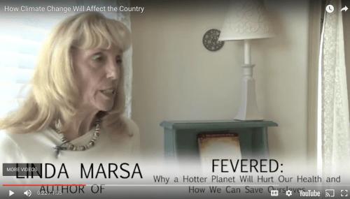 Fevered Video